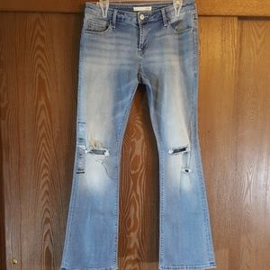 Daytrip Refined Lynx Boot Jeans NWT Size 29R